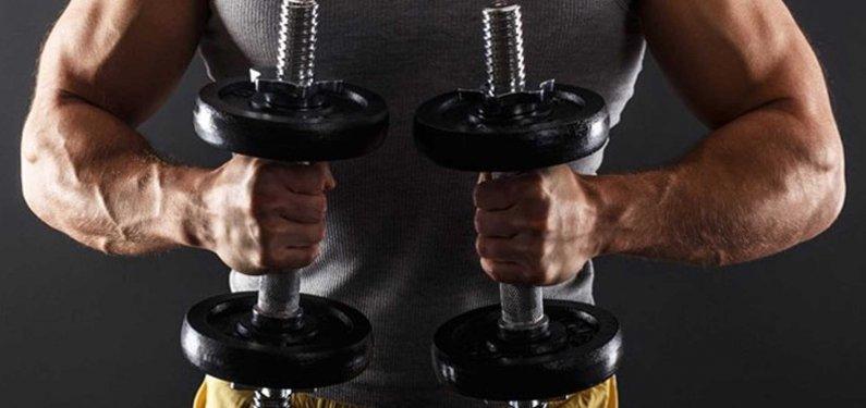 Лучшие упражнения с гантелями в домашних условиях: тренировка на основные группы мышц