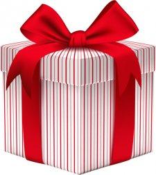 Подарок - фото 1