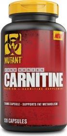 Carnitine - фото 1