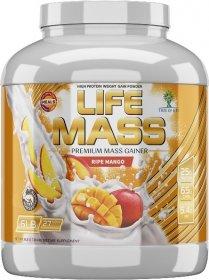Life Mass - фото 1