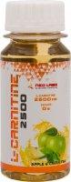 L-Carnitine 2500 mg (Яблоко-зеленый чай, 60 мл)