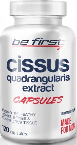 Cissus Quadrangularis Extract Capsules (120 капс)