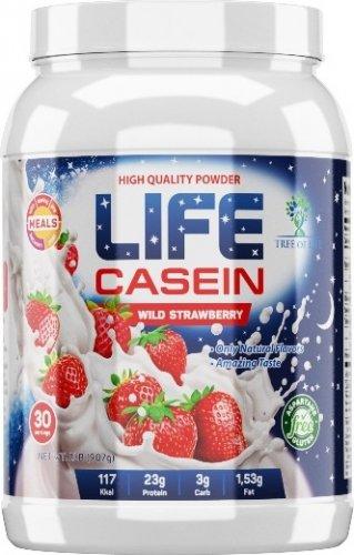 Life Casein (Дыня, 907 гр)