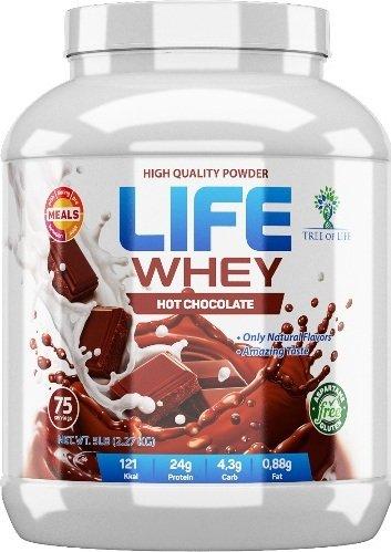 Life Whey (Банановый молочный коктейль, 2270 гр)