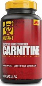 Carnitine (120 капс)