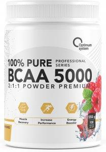 ВСАА 5000 Powder (Малина, 550 гр)